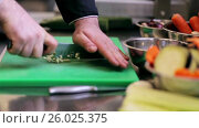Купить «hands of male chef cook chopping garlic in kitchen», видеоролик № 26025375, снято 19 июля 2019 г. (c) Syda Productions / Фотобанк Лори
