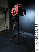 Купить «Черный с красным воротником жилет и полосатый галстук на красных плечиках», фото № 26036115, снято 14 апреля 2017 г. (c) Ротманова Ирина / Фотобанк Лори