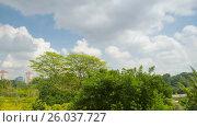 Купить «Ken Ridge park in Singapore rotation timelapse», видеоролик № 26037727, снято 23 марта 2019 г. (c) Кирилл Трифонов / Фотобанк Лори