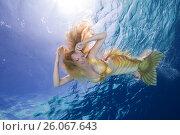 Купить «Golden-haired mermaid swims under the water, Indian Ocean, Maldives», фото № 26067643, снято 24 марта 2017 г. (c) Некрасов Андрей / Фотобанк Лори