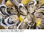Купить «oysters on plate top view», фото № 26082351, снято 14 декабря 2018 г. (c) Яков Филимонов / Фотобанк Лори