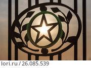Купить «Star in laurel leaves and branches», фото № 26085539, снято 8 апреля 2017 г. (c) Владимир Арсентьев / Фотобанк Лори