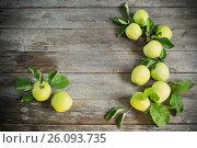 Купить «green apples on wooden background», фото № 26093735, снято 16 июля 2016 г. (c) Майя Крученкова / Фотобанк Лори