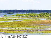 Купить «Landscape of flooded meadows», фото № 26107327, снято 26 мая 2013 г. (c) Анна Гучек / Фотобанк Лори