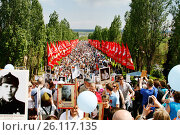 Купить «Volgograd, Russia - May 9, 2016: Procession of local people with photos of their relatives in Immortal Regiment on annual Victory Day on Mamaev Hill in Volgograd», фото № 26117135, снято 9 мая 2016 г. (c) Юлия Олейник / Фотобанк Лори