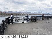 Купить «Рыбаки ловят рыбу в реке Енисей, на набережной г.Красноярск.», фото № 26118223, снято 1 мая 2013 г. (c) Светлана Попова / Фотобанк Лори