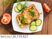 Бутерброды с помидором, сыром и зеленью и нарезанные овощи. Стоковое фото, фотограф Елена Руй / Фотобанк Лори