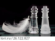 Купить «Glass chess kings and white leather», фото № 26122827, снято 29 августа 2011 г. (c) Tatjana Romanova / Фотобанк Лори
