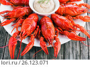 Купить «Boiled red crayfish with horseradish cream, close-up», фото № 26123071, снято 19 октября 2015 г. (c) Oksana Zh / Фотобанк Лори