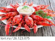 Купить «Boiled red crayfishes with sauce of grated horseradish, close-up», фото № 26123075, снято 21 марта 2019 г. (c) Oksana Zh / Фотобанк Лори