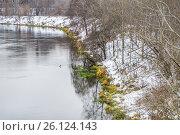 Купить «Река Сходня в районе Покровское-Стрешнево», фото № 26124143, снято 2 декабря 2015 г. (c) Алёшина Оксана / Фотобанк Лори