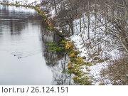 Купить «Фрагмент реки Сходня в районе Покровское-Стрешнево в Москве», фото № 26124151, снято 2 декабря 2015 г. (c) Алёшина Оксана / Фотобанк Лори