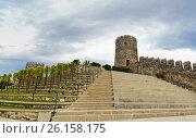 Купить «Rabati Castle in Akhaltsikhe, Georgia», фото № 26158175, снято 29 сентября 2016 г. (c) Elena Odareeva / Фотобанк Лори