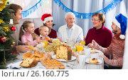 Купить «Positive family members making conversation», фото № 26160775, снято 16 августа 2018 г. (c) Яков Филимонов / Фотобанк Лори