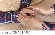 Купить «The girl tenderly embraced the man's hands», видеоролик № 26161107, снято 4 мая 2017 г. (c) Олег Башкир / Фотобанк Лори
