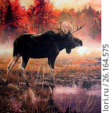 Купить «Elk in swamp», фото № 26164575, снято 26 января 2015 г. (c) age Fotostock / Фотобанк Лори