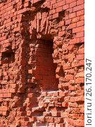 Купить «Брестская крепость. Фрагмент стены», фото № 26170247, снято 21 апреля 2017 г. (c) Дмитрий Грушин / Фотобанк Лори