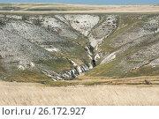 Купить «Донские меловые горы в Донском природном парке», фото № 26172927, снято 29 апреля 2017 г. (c) Матвей Солодовников / Фотобанк Лори