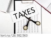 Купить «Metaphor for the payment of taxes», фото № 26182563, снято 4 мая 2017 г. (c) Александр Калугин / Фотобанк Лори