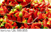 Купить «Ice cream with strawberry on white», видеоролик № 26189855, снято 22 марта 2017 г. (c) Яков Филимонов / Фотобанк Лори