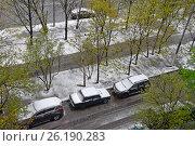 Снегопад в мае. Москва 2017, эксклюзивное фото № 26190283, снято 8 мая 2017 г. (c) Юрий Морозов / Фотобанк Лори