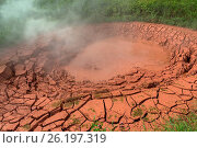 Купить «Krasnyy Red Mudpot in Valley of Geysers.», фото № 26197319, снято 17 июня 2019 г. (c) easy Fotostock / Фотобанк Лори