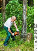 Купить «Man in a forest sawing wood with a chainsaw», фото № 26209527, снято 2 июля 2016 г. (c) Сергей Завьялов / Фотобанк Лори