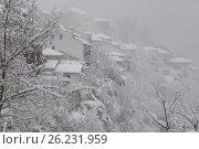 Купить «Болгария. Велико-Тырново. Туманный зимний день», фото № 26231959, снято 6 января 2017 г. (c) Victor Spacewalker / Фотобанк Лори