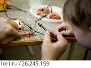 Купить «Creating a battery», фото № 26245159, снято 27 февраля 2020 г. (c) Елена Вишневская / Фотобанк Лори