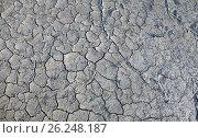 Купить «Засуха», фото № 26248187, снято 8 мая 2017 г. (c) Валерий Боярский / Фотобанк Лори