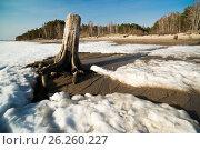 Spring melting snow. Spring landscape. Siberia. Стоковое фото, фотограф Станислав Сергеев / Фотобанк Лори