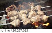 Купить «Barbecue of meat roasted on charcoal», видеоролик № 26267023, снято 14 мая 2017 г. (c) Кузьмов Пётр / Фотобанк Лори