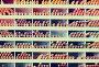 various pencil in shop, фото № 26270159, снято 24 мая 2017 г. (c) Яков Филимонов / Фотобанк Лори