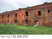 Купить «Брестская крепость. Цитадель», фото № 26306855, снято 21 апреля 2017 г. (c) Дмитрий Грушин / Фотобанк Лори