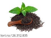 Купить «Черный сухой чай с деревянной ложкой и листьями мяты», фото № 26312835, снято 20 июня 2019 г. (c) Скляров Роман / Фотобанк Лори