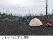 Купить «Палаточный лагерь в Мертвом лесу на Камчатке», фото № 26318399, снято 23 марта 2019 г. (c) А. А. Пирагис / Фотобанк Лори