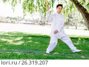 Купить «Handsome man practicing thai chi», фото № 26319207, снято 19 декабря 2014 г. (c) Sergey Nivens / Фотобанк Лори