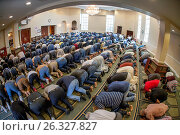 Купить «Muslim men prostrate themselves in 'Sujood' prayer position with their faces on the Islamic patterned carpet at Friday afternoon prayers during religious services at an Anaheim, CA, mosque.», фото № 26327827, снято 14 октября 2016 г. (c) age Fotostock / Фотобанк Лори