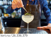 Купить «bartender decorating glass of cocktail at bar», фото № 26336379, снято 7 февраля 2017 г. (c) Syda Productions / Фотобанк Лори