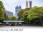 Купить «Вид на строящийся небоскреб Yomiuri Shimbun Tokyo Headquarters с внутреннего двора Императорского Дворца в Токио, Япония», фото № 26346327, снято 10 апреля 2013 г. (c) Кекяляйнен Андрей / Фотобанк Лори