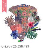 Watercolor illustration of indian elephant head. Vector. Стоковое фото, фотограф Irene Shumay / Фотобанк Лори