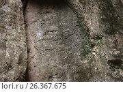 Купить «Petroglyphs made by primeval man. Gobustan national park. Azerbaijan», фото № 26367675, снято 26 апреля 2017 г. (c) Аркадий Захаров / Фотобанк Лори