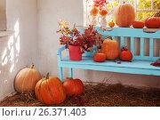 Купить «pumpkins on blue wooden bench indoor», фото № 26371403, снято 13 сентября 2016 г. (c) Майя Крученкова / Фотобанк Лори
