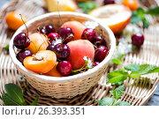 Fresh fruit apricots and cherries in wicker basket. Стоковое фото, фотограф Наталья Майорова / Фотобанк Лори