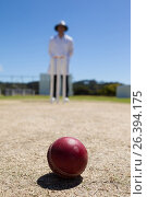 Cricket ball on pitch with umpire standing in background. Стоковое фото, агентство Wavebreak Media / Фотобанк Лори