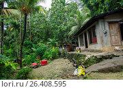 Купить «Local home for poor people in tropical forest, Marshall Islands, Majuro», фото № 26408595, снято 15 ноября 2018 г. (c) age Fotostock / Фотобанк Лори