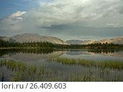Купить «Calm mountain lake and grass near the shore. Yakutia, Omulewska the Midlands. Якутия, Омулёвское среднегорье.», фото № 26409603, снято 23 июля 2009 г. (c) Сергей Карпухин / Фотобанк Лори
