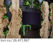 Купить «Натуральный стабилизированный мох и дерево в современном, экологичном дизайне интерьера», фото № 26411867, снято 25 мая 2017 г. (c) Светлана Васильева / Фотобанк Лори