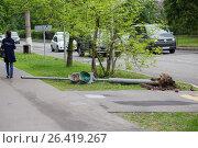 Последствия урагана в Москве 29 мая 2017 года. Светофор, вырванный из земли ветром. Редакционное фото, фотограф Galina Barbieri / Фотобанк Лори