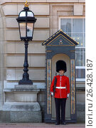Купить «Buckingham Palace, guard, United Kingdom, England, London», фото № 26428187, снято 11 октября 2018 г. (c) age Fotostock / Фотобанк Лори